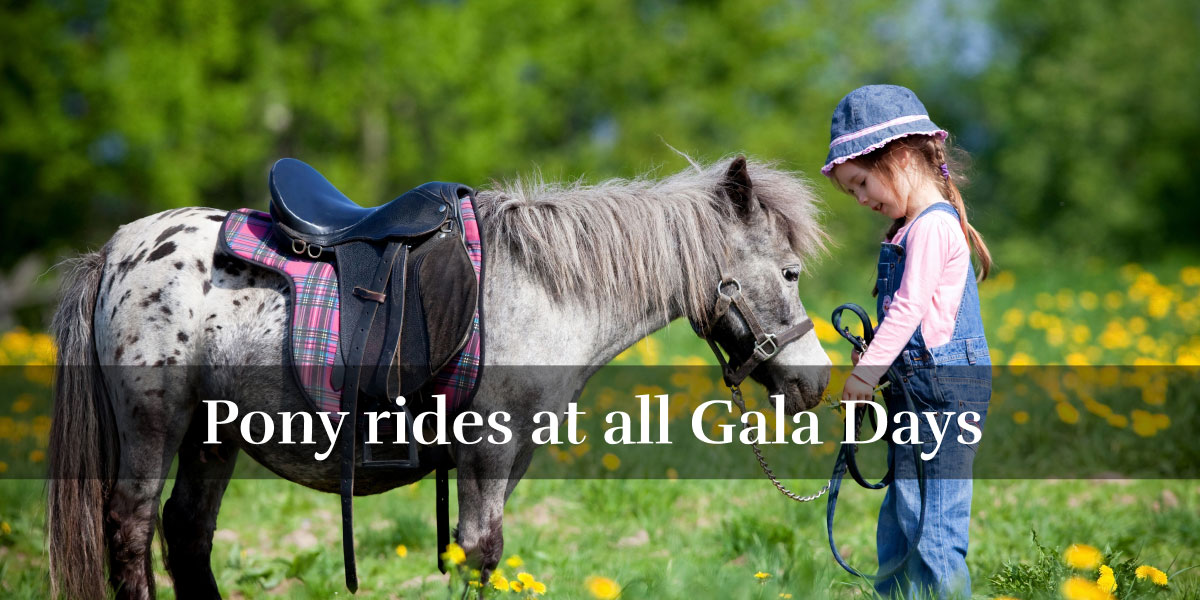 Pony rides at all Gala Days